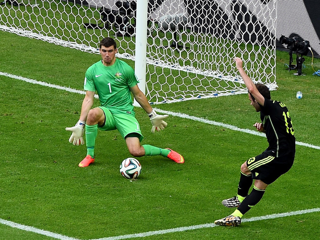 Imageresultforworldcuprussianetherlands